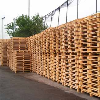 Wooden pallets from Fratelli Dal Fior