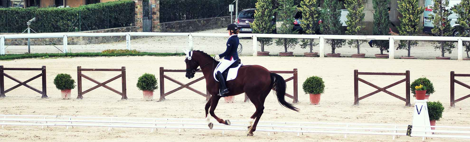 Dressage event sponsored by the company